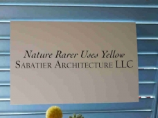 Nature Rarer Uses Yellow 01.jpg